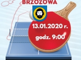 plakat-tenis-stoc582owy-mixt