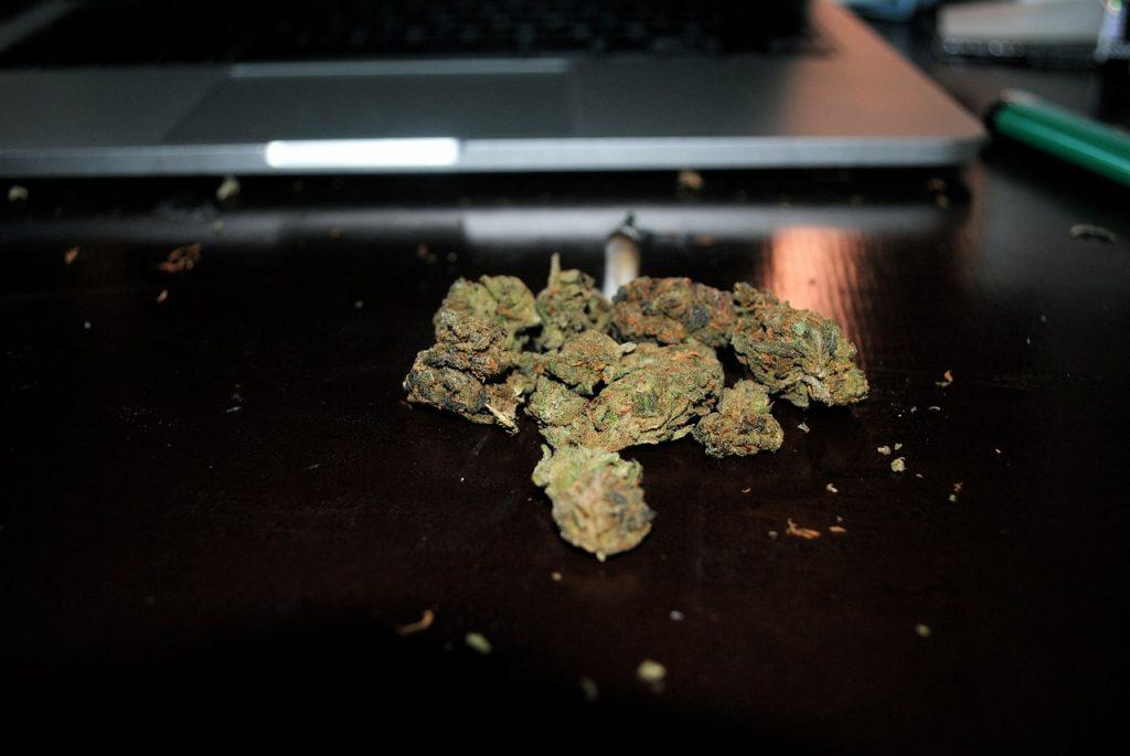 marijuana-505464_1280