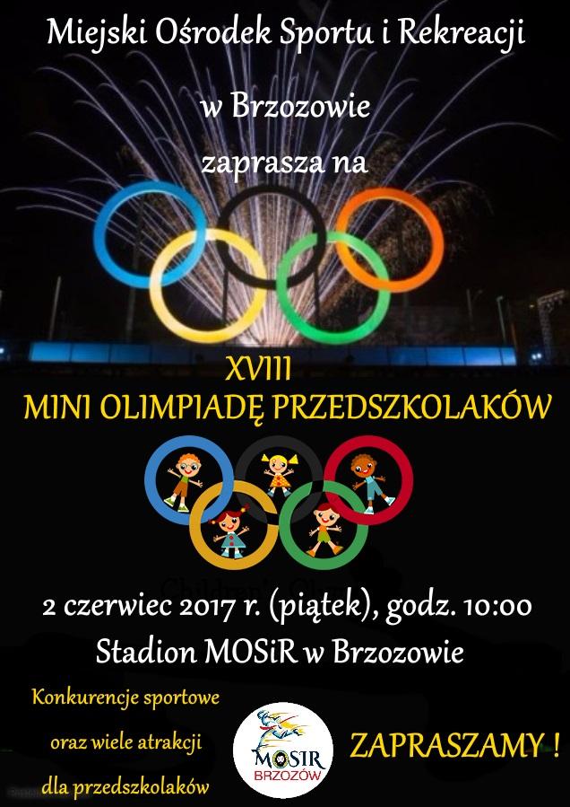 miniolimpiada-2017