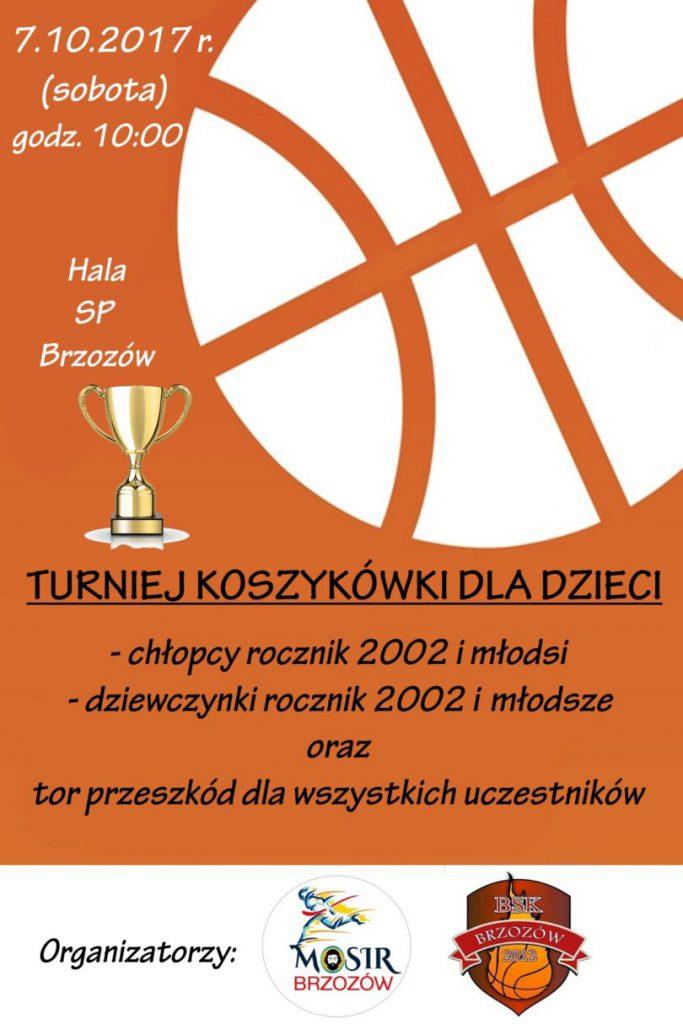 plakat-kosz-810x1215