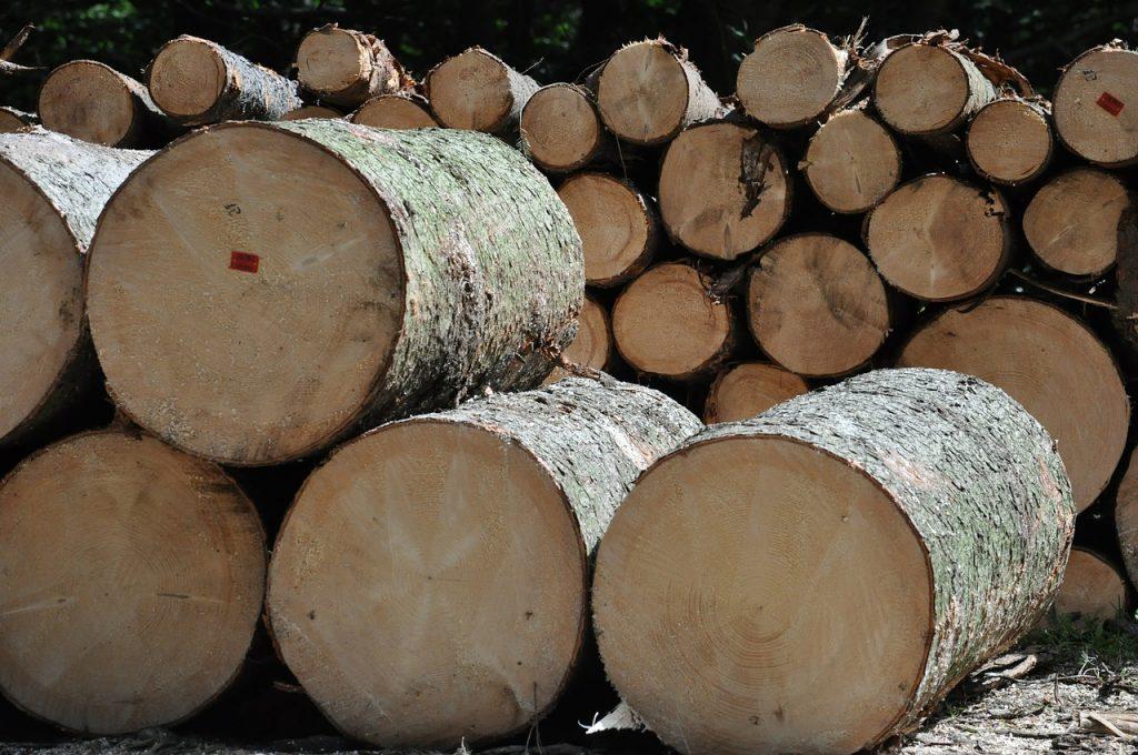 wood-456195_1280