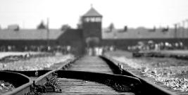 "POWIAT BRZOZOWSKI: Konkurs na plakat ""Holokaust–Pamiętamy"""