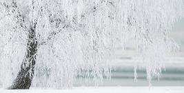 Przygotowanie województwa do sezonu zimowego