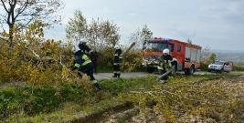 Ćwiczenia taktyczne jednostek OSP z terenu gminy Dydnia (ZDJĘCIA)