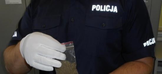28-latek przechowywał w domu 7 gramów marihuany. Grozi mu do 3 lat więzienia