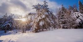 Bieszczady w zimowej odsłonie. Słoneczny dzień i pełno śniegu (ZDJĘCIA)