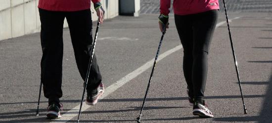 Brzozowski rajd nordic walking. Zobacz program