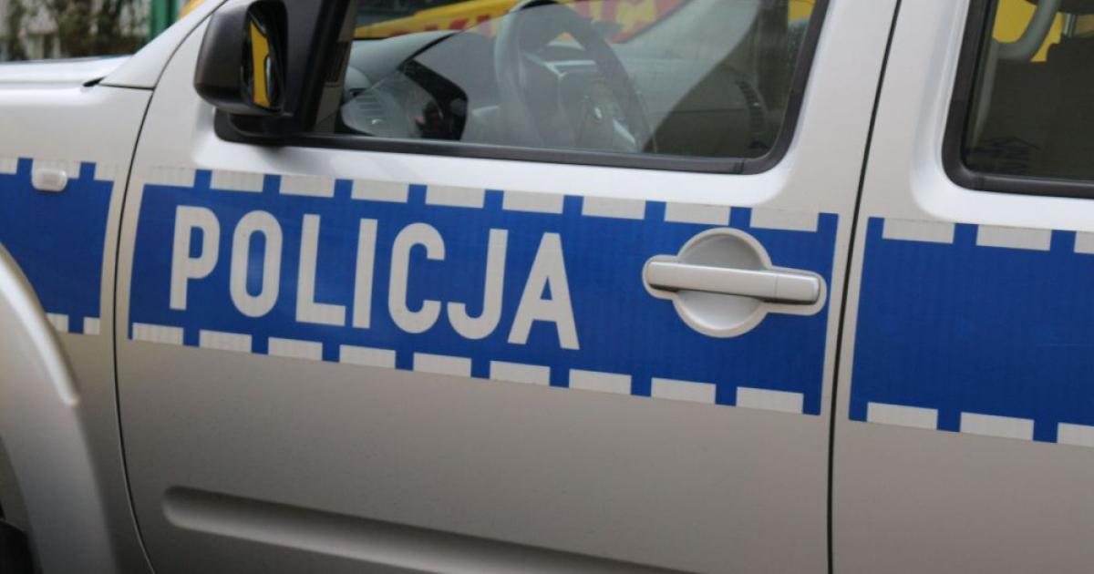 KRONIKA POLICYJNA: Zderzenie z dzikiem, narkotyki i agresywny złodziej… kurtek